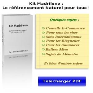 Kit Madrileno: livre seo, aide et conseils sur le référencement naturel