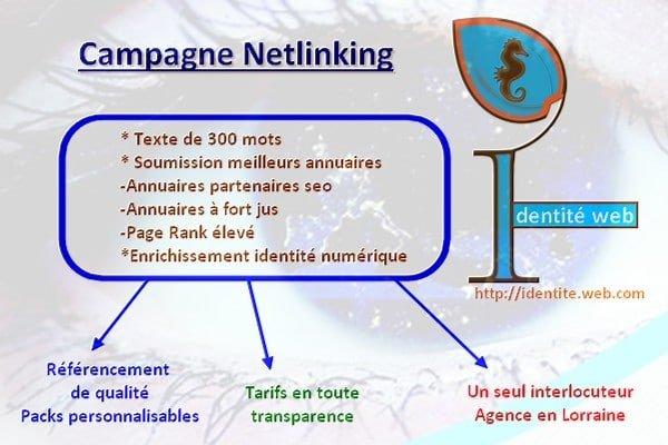 Campagne de référencement netlinking