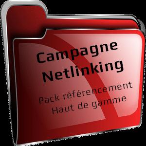 campagne de netlinking - pack référencement haut de gamme